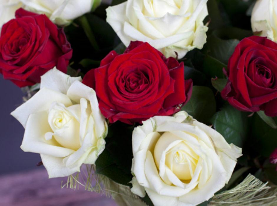 25 белая красная (4)