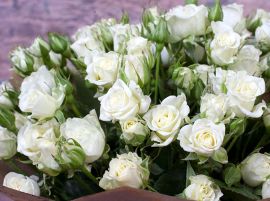 25 белых кустовых (3)